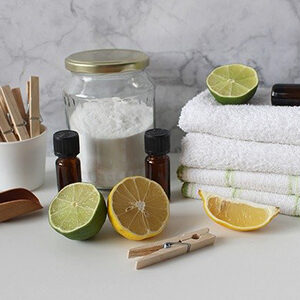 An assortment of ingredients to use for laundromat tips